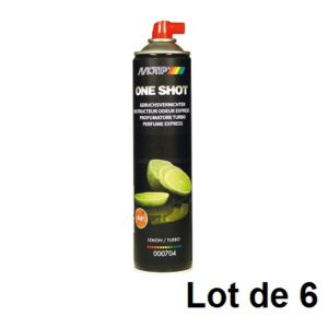 AEROSOL DESTRUCTEUR ODEUR EXPRESS 600ML 03906.06 LOT DE 6